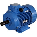 Severe Duty Three-Phase AC Motors