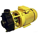Close-Coupled Non-Metallic Chemical Pumps