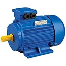 Three-Phase AC Motors